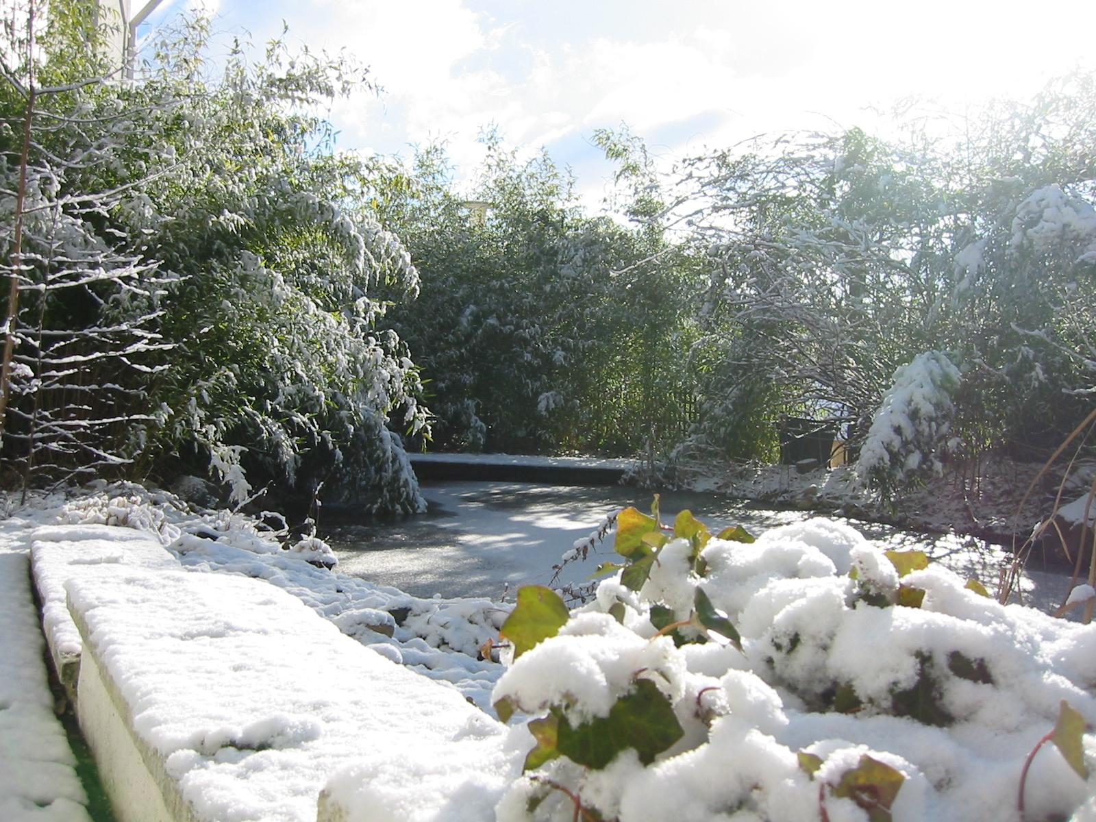 Winterbilder-18