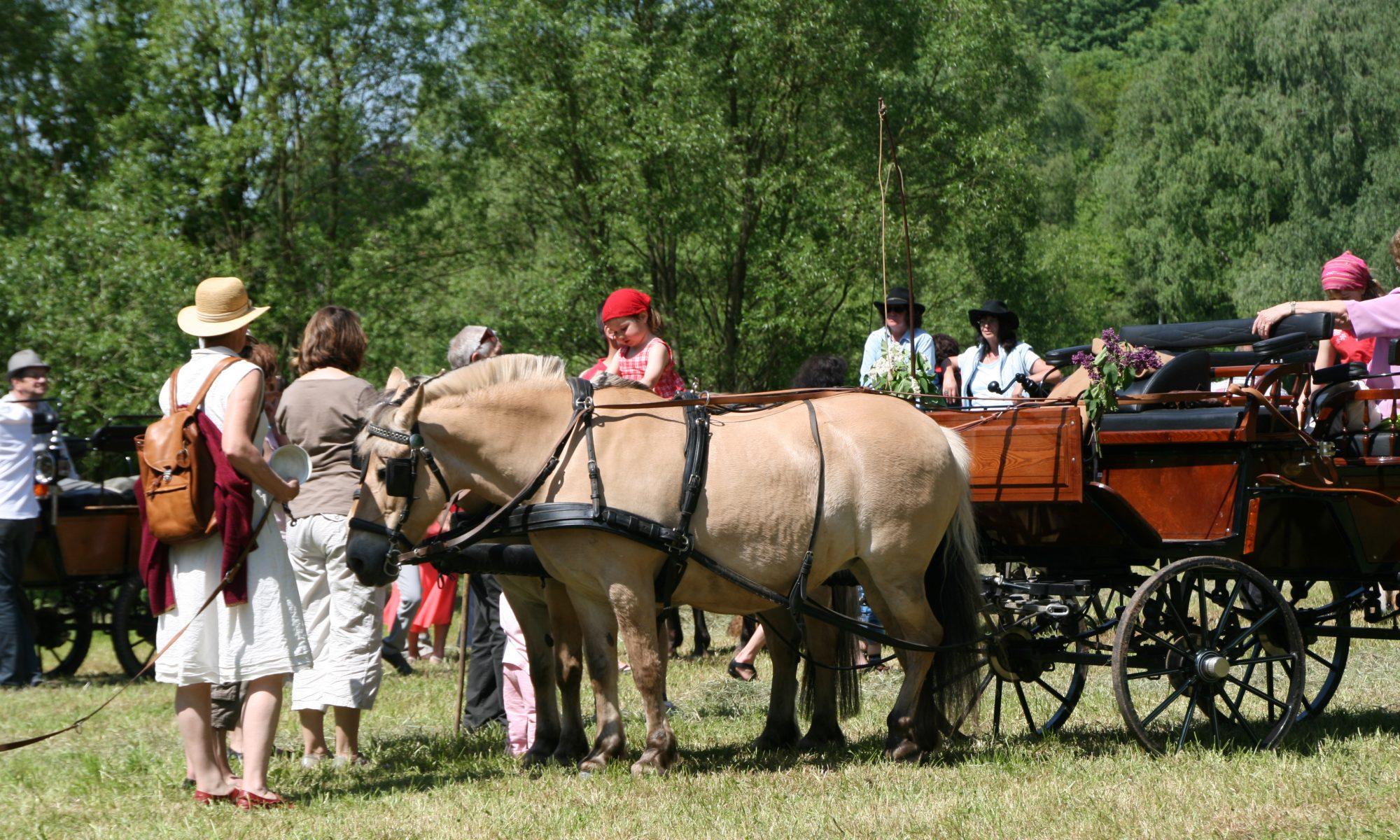Pferdesegnung im Wendalinustal
