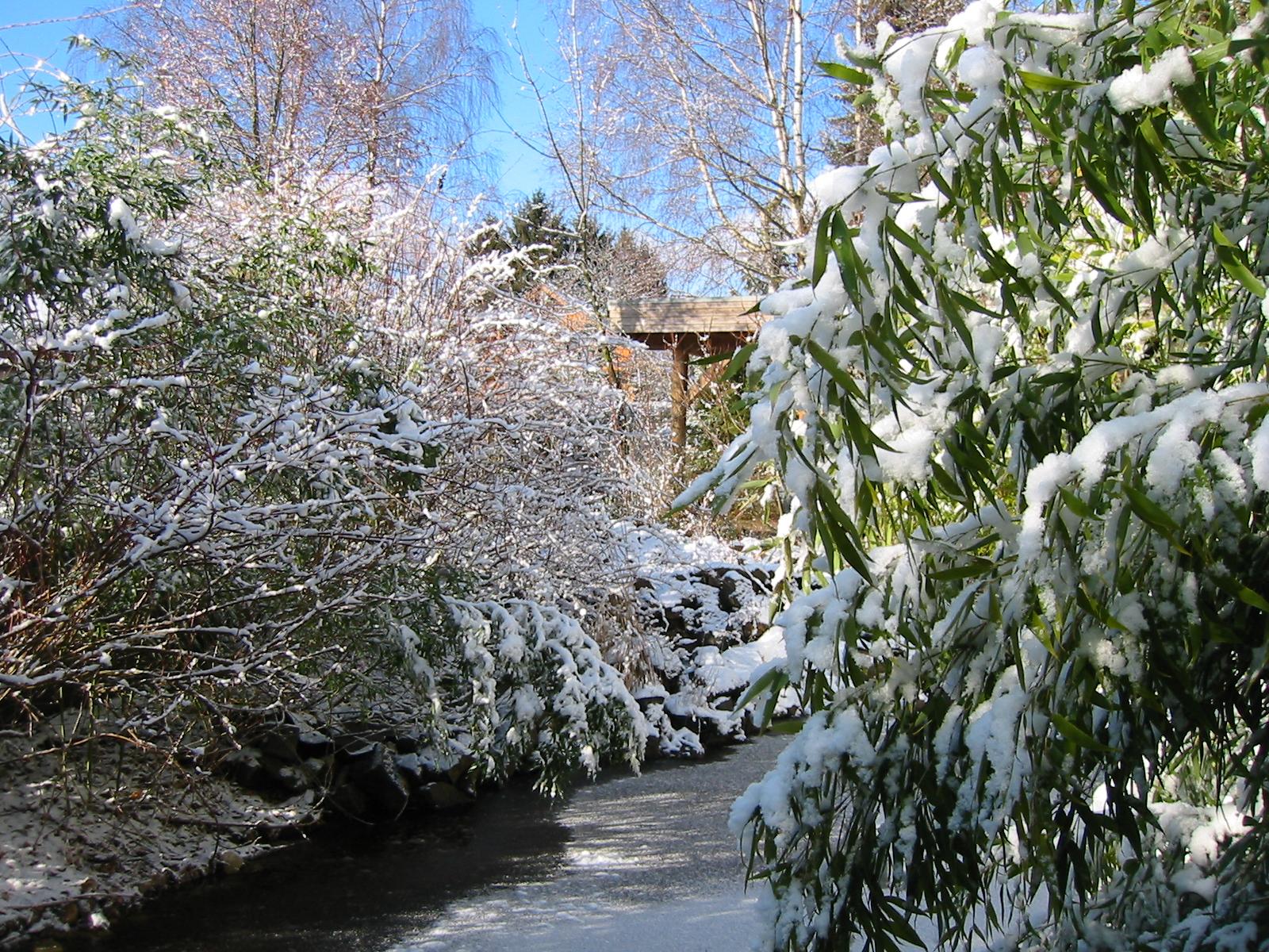Winterbilder-16